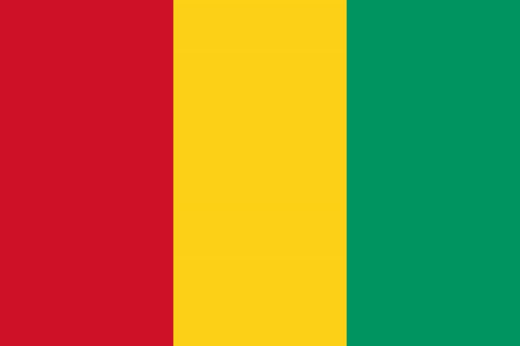 Formação virtual para os membros do Comité de Aprovação Nacional da Guiné, 12 -14 Outubro de 2020